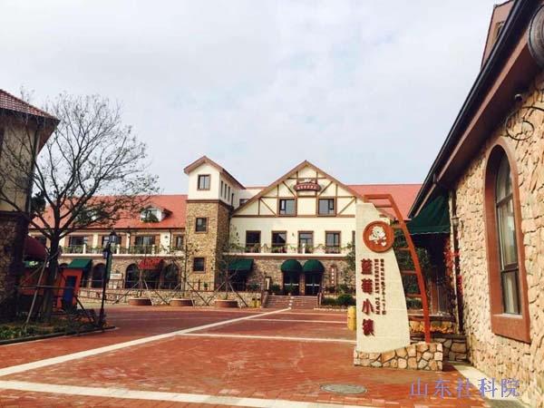 青岛西海岸新区藏马山国际旅游度假区